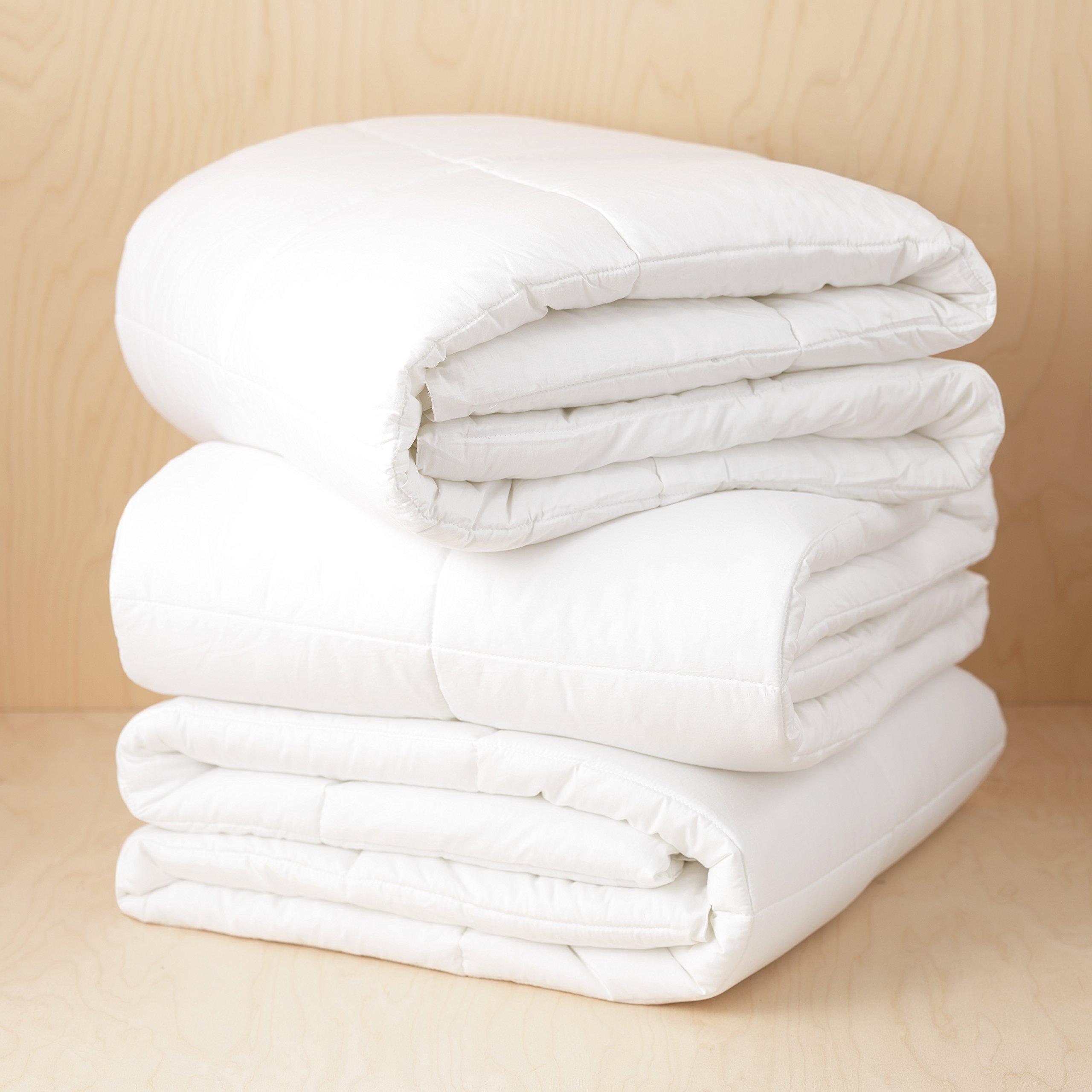 Boxt Teddy Single Ply Cotton Hypo Allergenic Down Alternative Comforter
