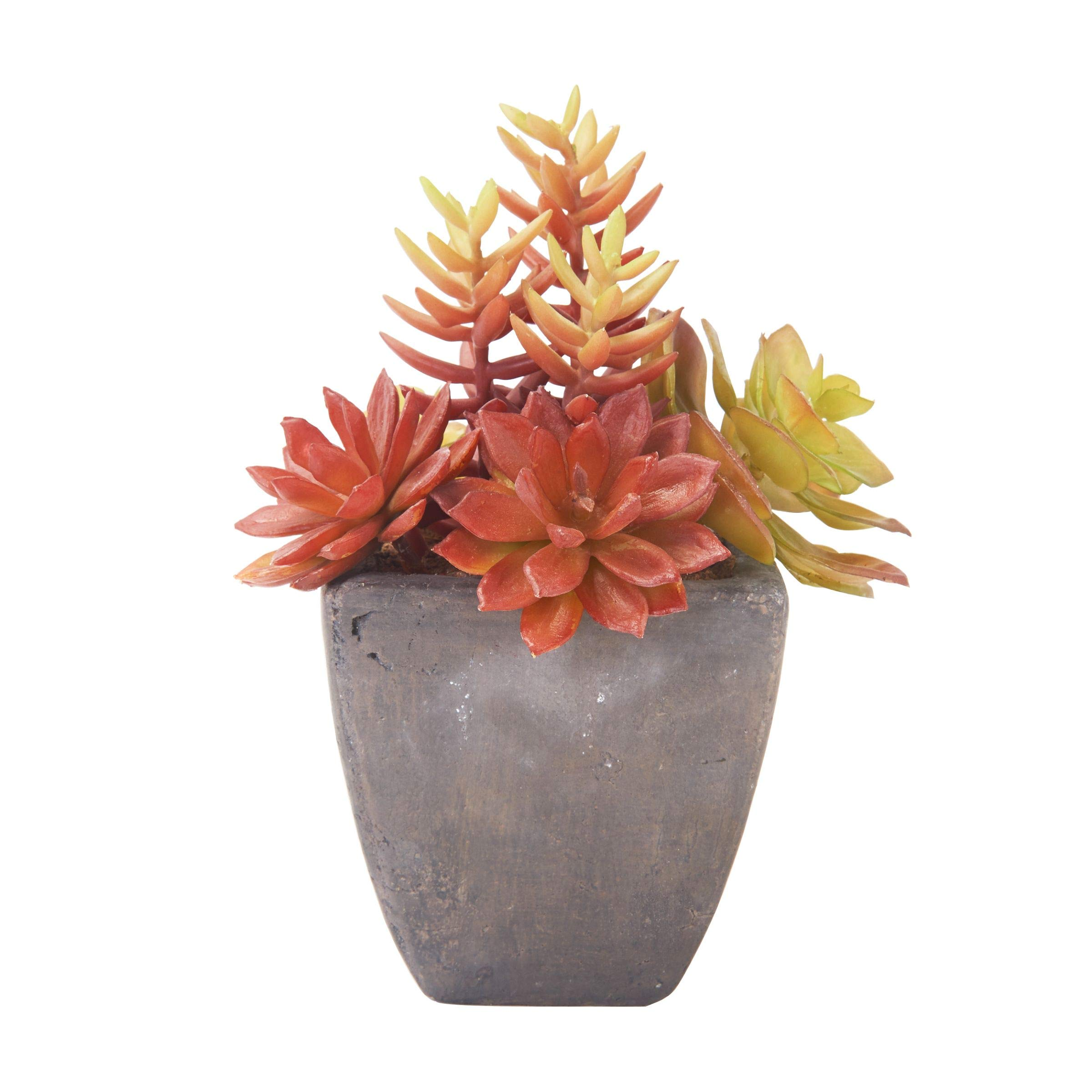 Elements Artifical Succulent Plant, 7.5-inch, Assorted by Elements