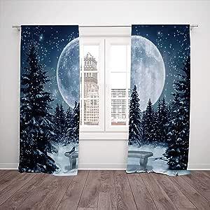 SCOCICI Cortina de ventana opaca térmica aislada [decoraciones de invierno, noche de invierno, una gran luna llena estrellas Lghts la oscuridad, azul blanco] dormitorio, salón, dormitorio, cocina, café.: Amazon.es: Hogar