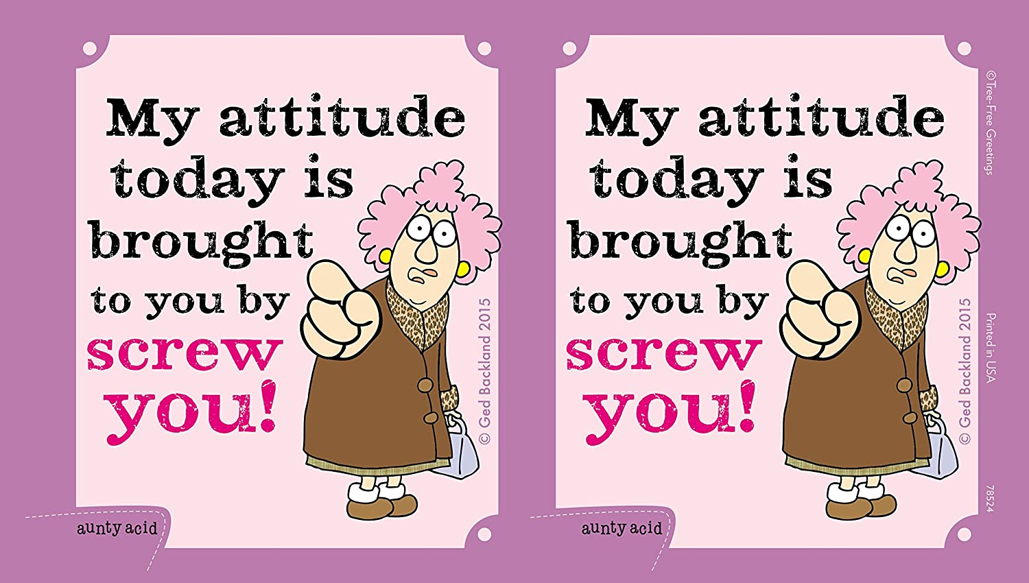 Tree-Free Greetings 16-Ounce Sip N Go Stainless Lined Travel Mug SG78524 Aunty Acid Attitude Today