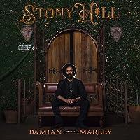 Stony Hill (Deluxe Double Vinyl Package) [Vinilo]