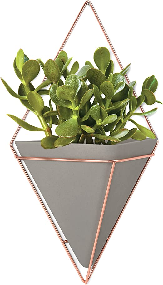 Geometric Flower Plant Metal Frame Air Hanging Planter Home Decoration #1