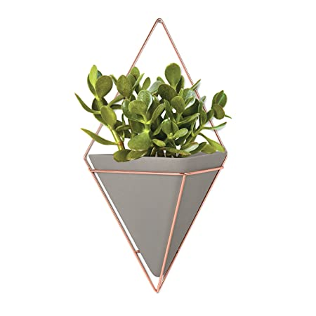 superb wall plant holders. Umbra Trigg Hanging Planter Vase  Geometric Wall Decor Container Great For Succulent Plants