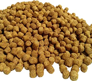 "Pellets, 1/4"" Aquatic Foods Floating Koi & Pond Fish Food. with Free Krill & Silk Worms"