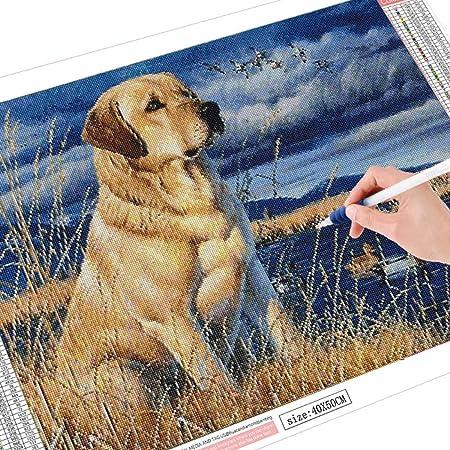 5D Labrador Perros Y Cachorros De Pintura De Diamante Kit