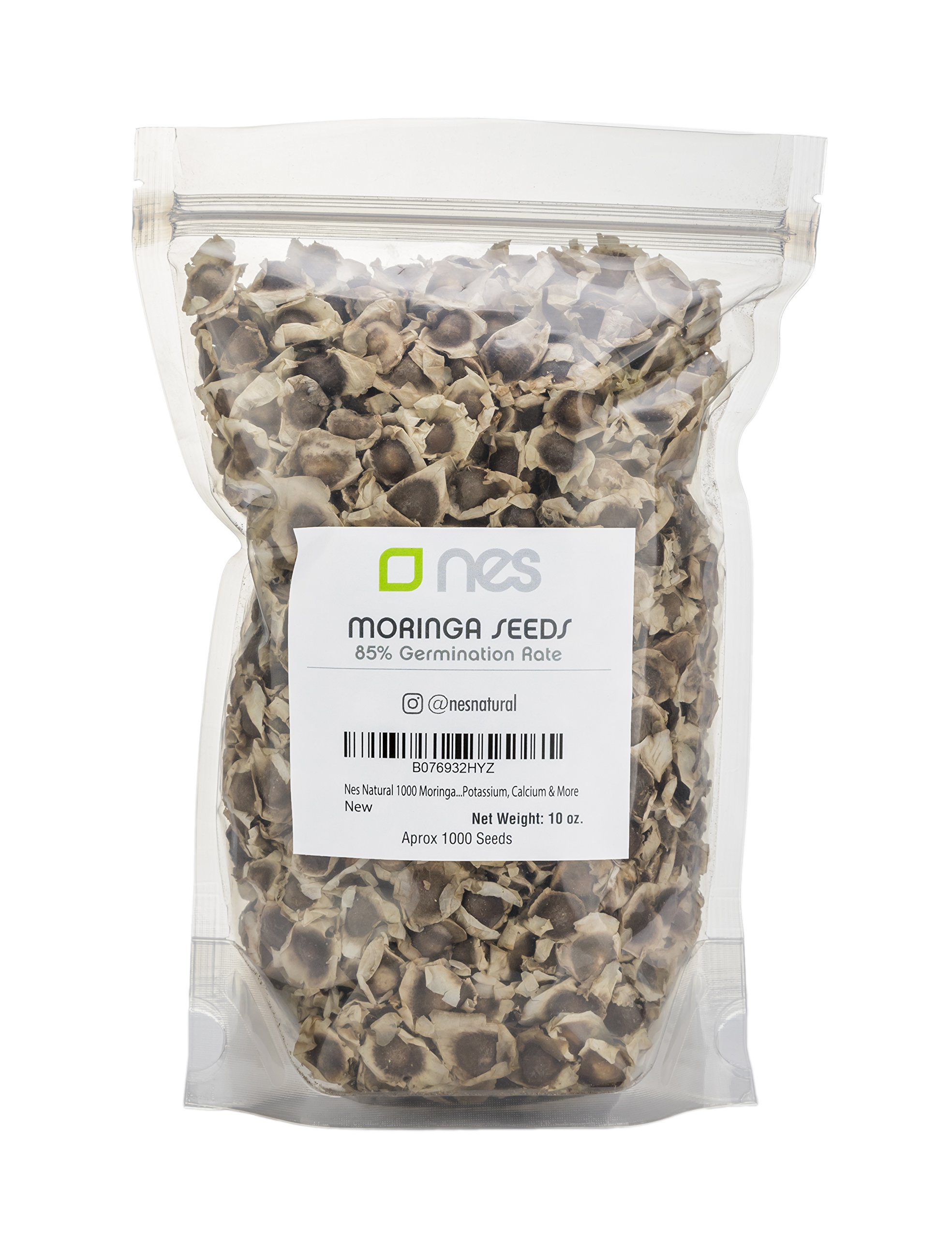 Nes Natural 1000 Moringa Oleifera Dried Seeds Pack | Nutritional, Antioxidant & Anti Inflammatory Drumstick Tree Edible Seeds | Rich In Vitamins, Minerals, Protein, Potassium, Calcium & More by NES Natural