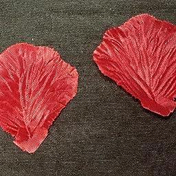 Amazon Co Jp カスタマーレビュー 華やかな演出 フラワーシャワー バラ の 花びら 赤 ピンク 白 3色 900枚 セット 結婚式 二次会 パーティー 等に