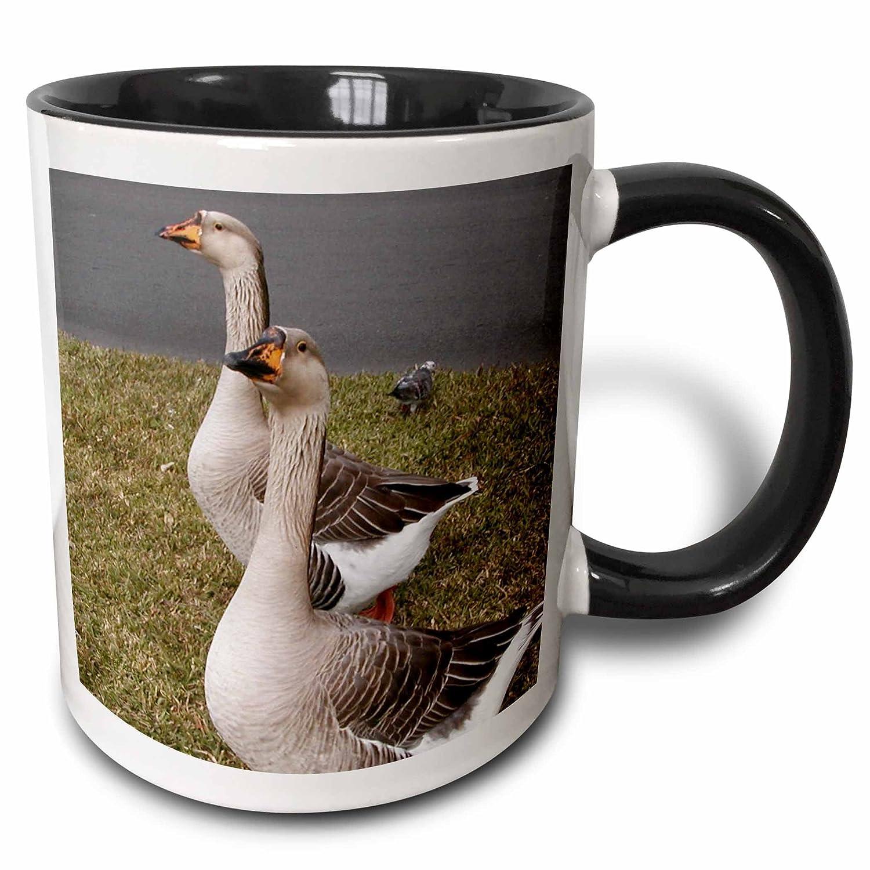 3dRose 19130/_4 African Geese Two Tone Black Mug 11 oz Multicolored