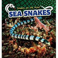 Sea Snakes (Snakes on the Hunt)