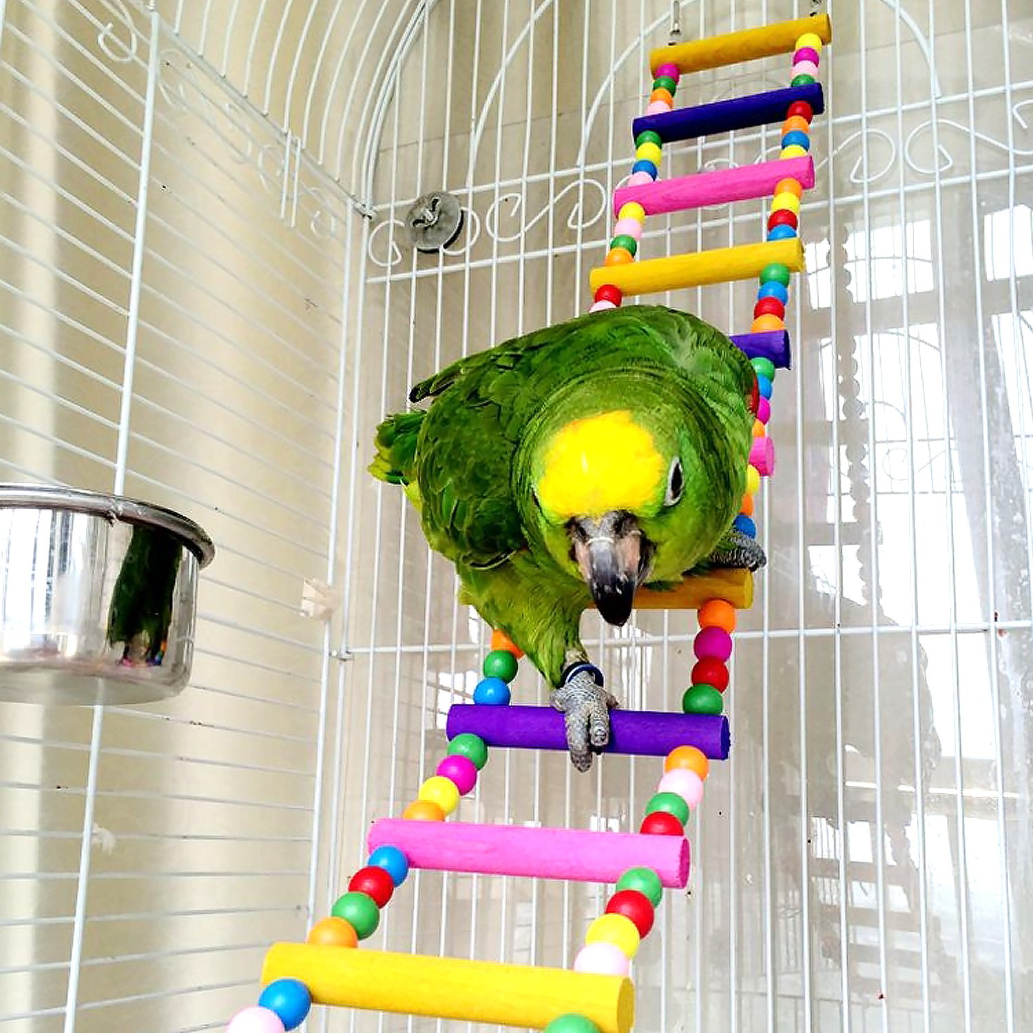 CocoGo Funny Swing Bird Toy Flexible Ladder, Colorful Wooden Rainbow Bridge Parrot's cage Shelf 31.5 Inch L and 4 Inch W by CoCogo