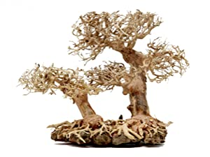 Bonsai Driftwood Aquarium Tree DLS (9 Inch Height x 12 Inch Length) Natural, Handcrafted Fish Tank Decoration | Helps Balance Water pH Levels, Stabilizes Environments | Easy to Install
