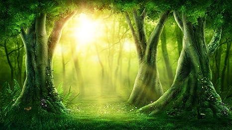 Fondos de bosques de cuentos