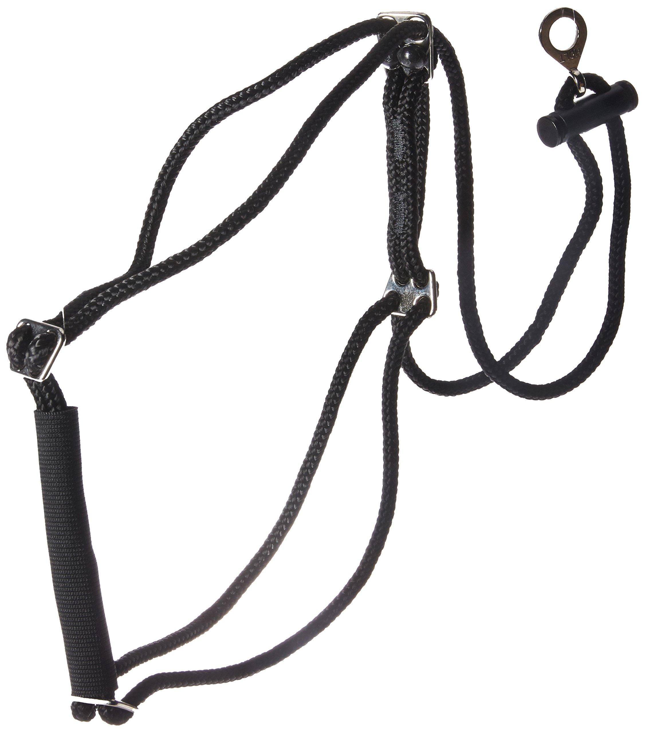 Coastal Pet Products DCP603320MD Nylon Walk Right Control Dog Harness, Medium, Black
