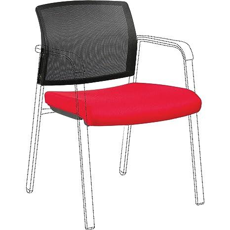 Amazon.com: Lorell LLR30946 - Kit de respaldo y asiento para ...
