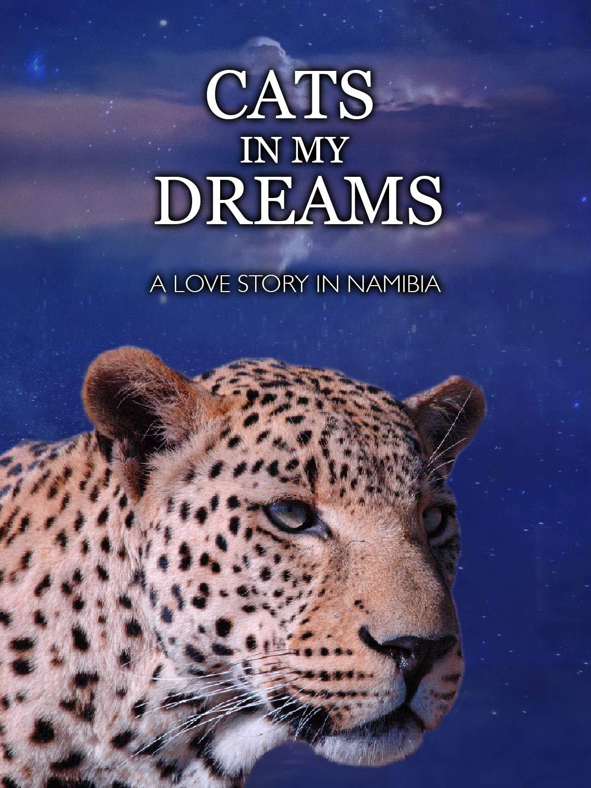 Cats In My Dreams