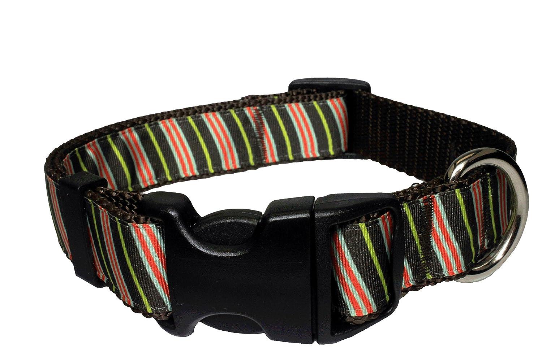 Medium Collar Paw Paws USA Bean Counter Dog Collar, Medium, Multicolord