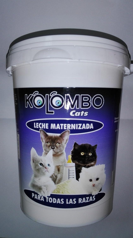 Leche maternizada para gatos KOLOMBO (Formato 500 gr): Amazon.es ...