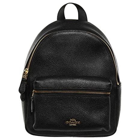 f1108c0803 Image Unavailable. Image not available for. Colour  Coach Charlie Pebble  Small Leather Backpack F38263 ...