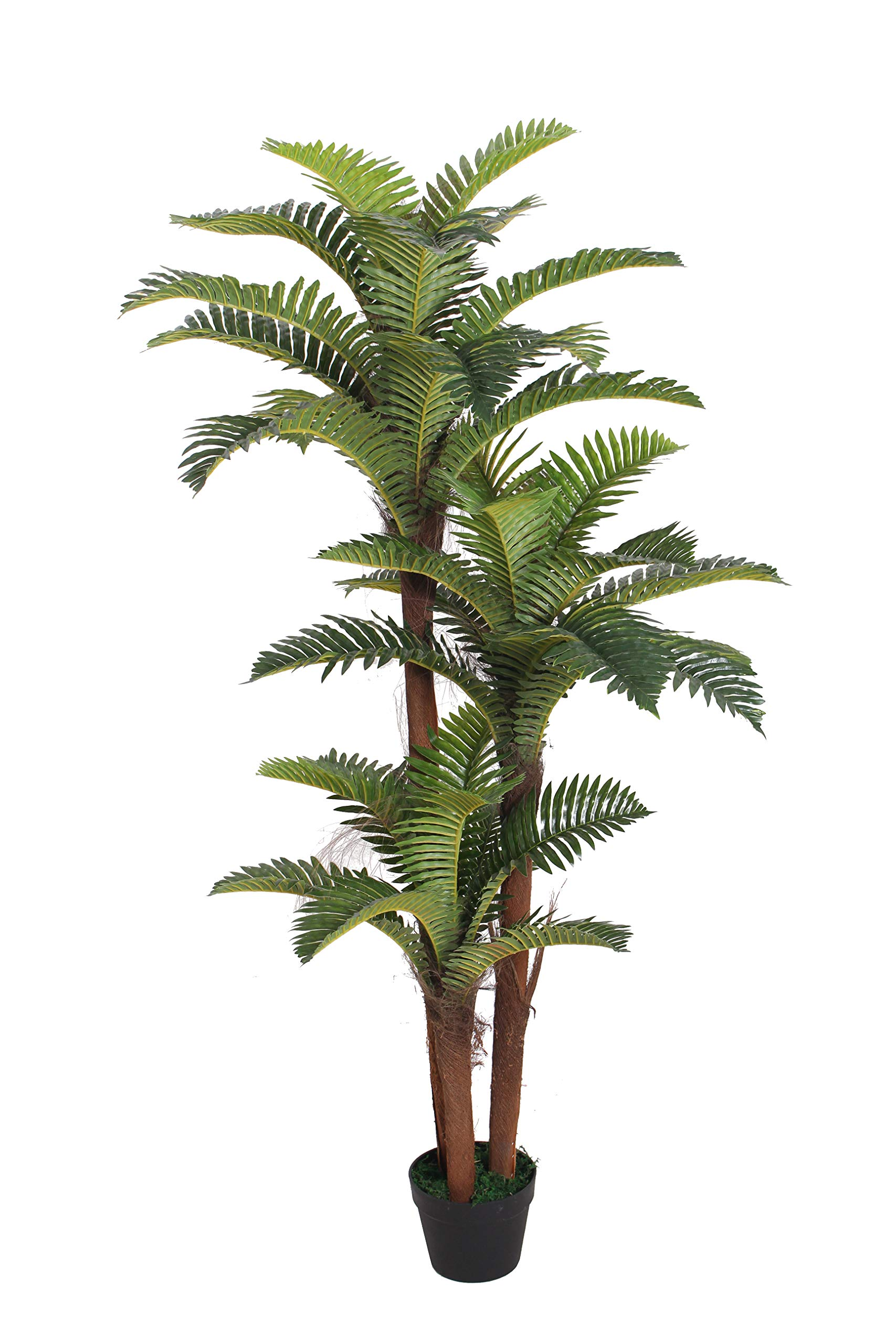 AMERIQUE-Gorgeous-5-Feet-Boston-Fern-Tree-Artificial-Silk-Plant-with-UV-Protection-Pre-Nursery-Pot-Feel-Real-Technology-Super-Quality-Green