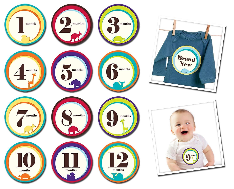 Sticky Bellies -Best Baby Shower Gift (Wild One) Casamivi inc. 317