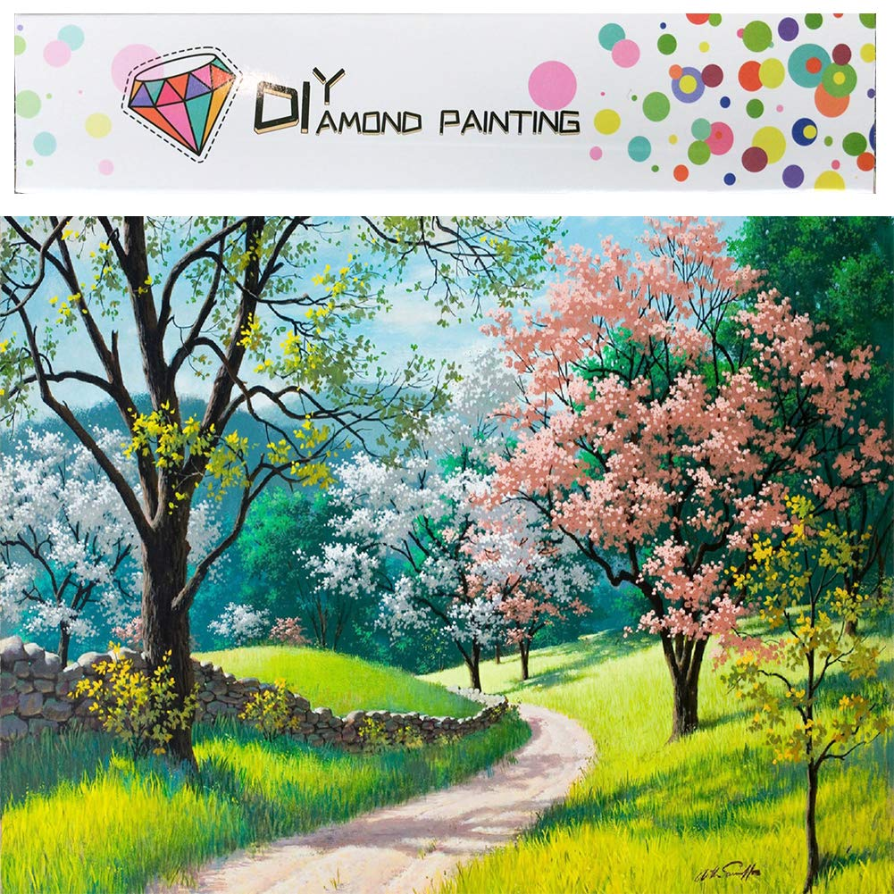 Diamond Painting Kits for Adults Full Drill Paint with Diamonds 5D Gem
