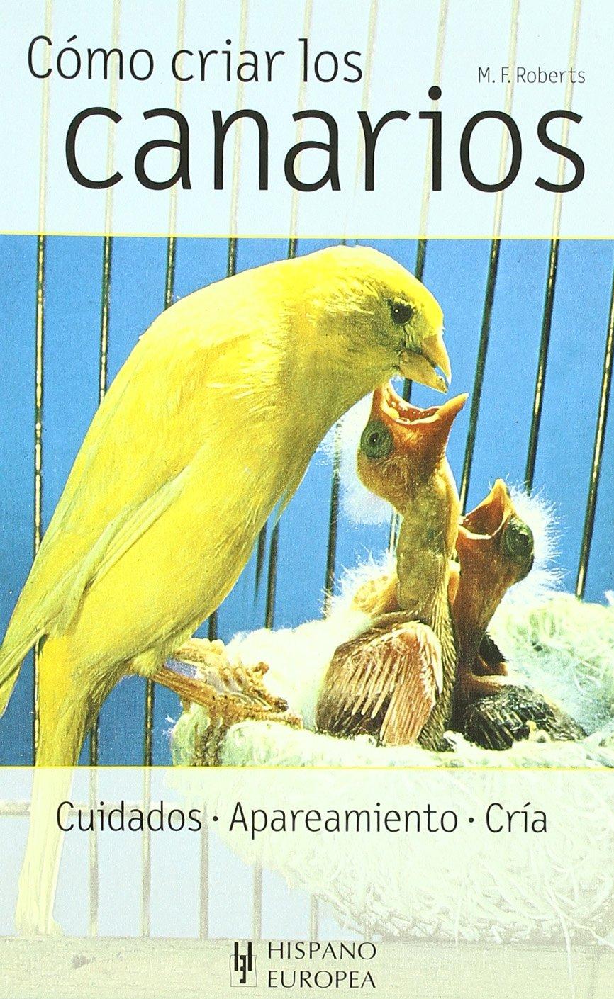 Como criar los canarios/ All About Breeding Canaries (Animales Domesticos) (Spanish Edition)