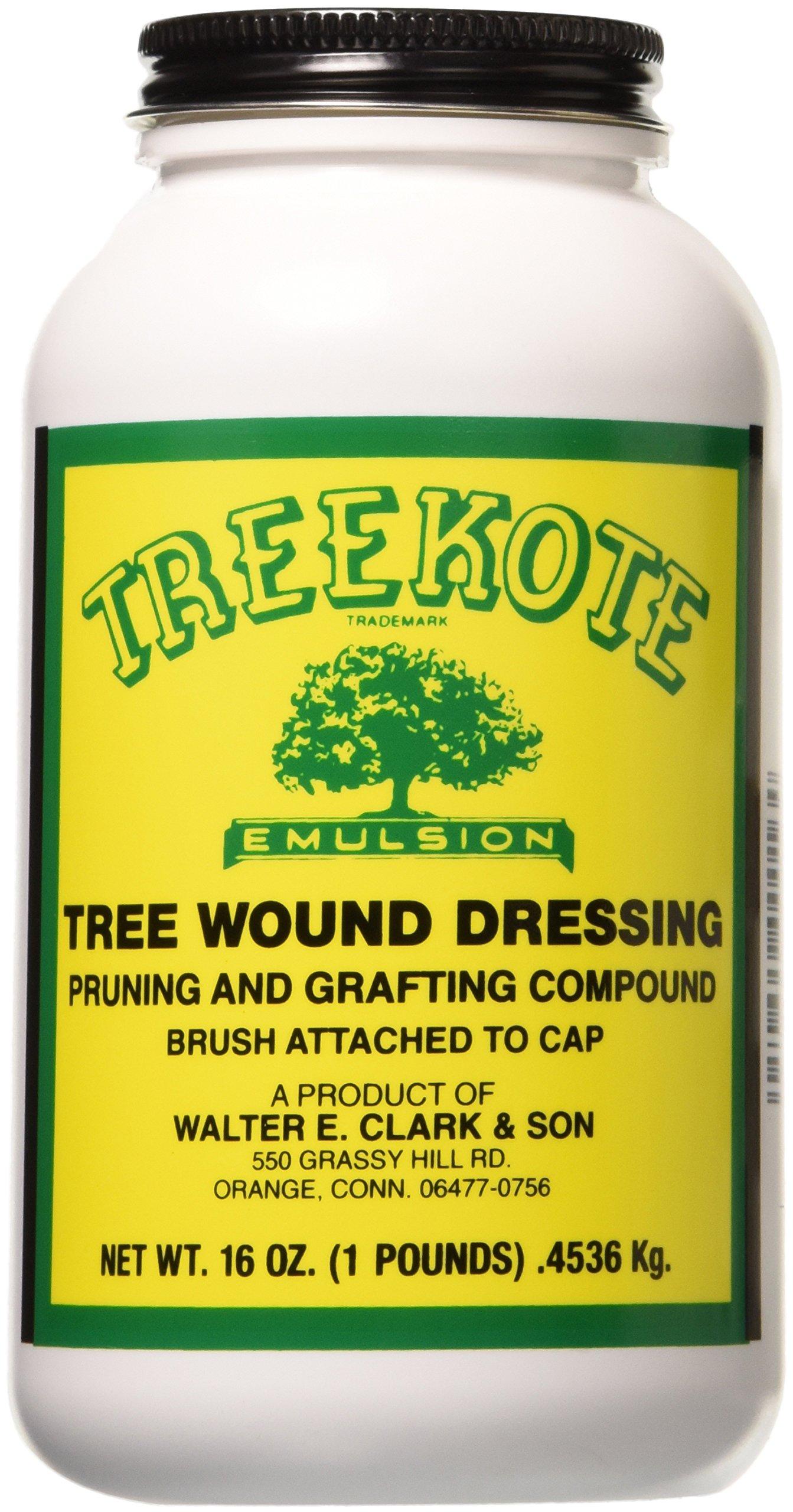 Walter E Clark Clarks 00016 Treekote Brushtop Container, 16-Ounce