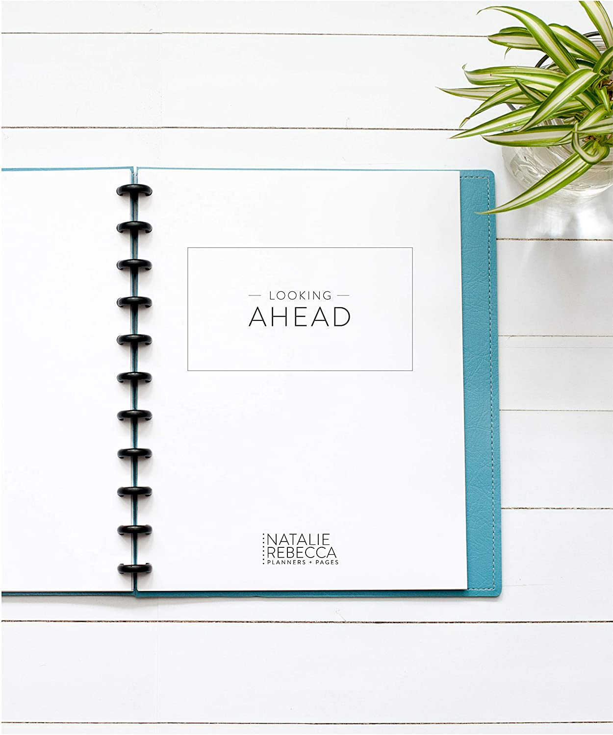 Looking Ahead Monthly Reflection Page for Letter Sized Disc
