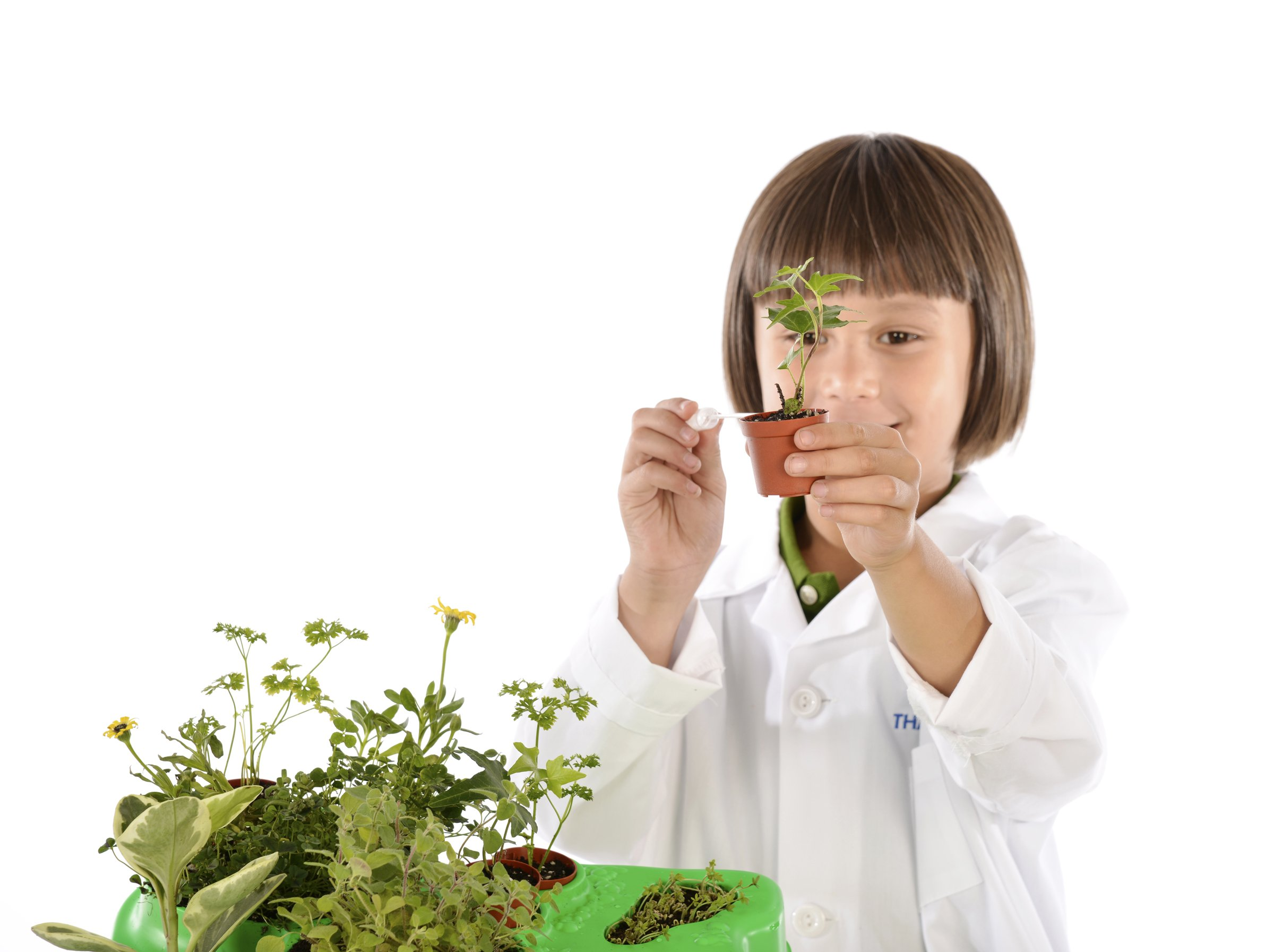 Kids First Botany - Experimental Greenhouse Kit by Kids First (Image #5)