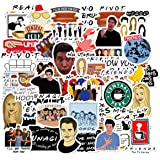 Acekar Friends TV Show Theme Stickers Pack of 50 Stickers -Funny Friends Stickers Perfect for Hydro Flask,Laptop,Phone,car,Sk