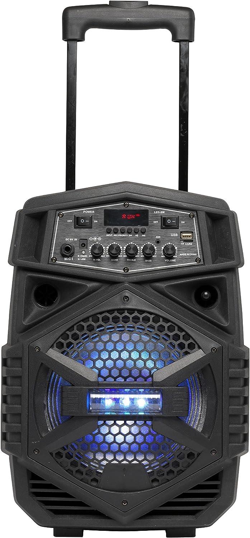 Denver Electronics TSP-110 10W Negro Altavoz portátil - Altavoces portátiles (2,54 cm, 10 W, Inalámbrico, Negro, Giratorio, Azul)
