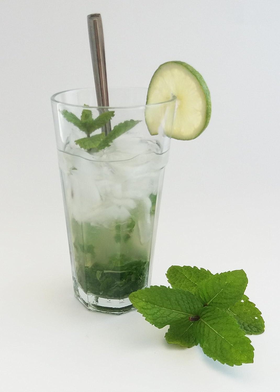 Havana-Cocktails//Barkeeper Professionelle Marke//400/ml Mojito /& Cocktail-Gl/äser //geh/ärtetes Glas 6/St/ück Cuba Libre