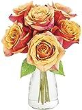 KaBloom Bouquet of 6 Fresh Cut Orange Roses (Long Stemmed) with Vase