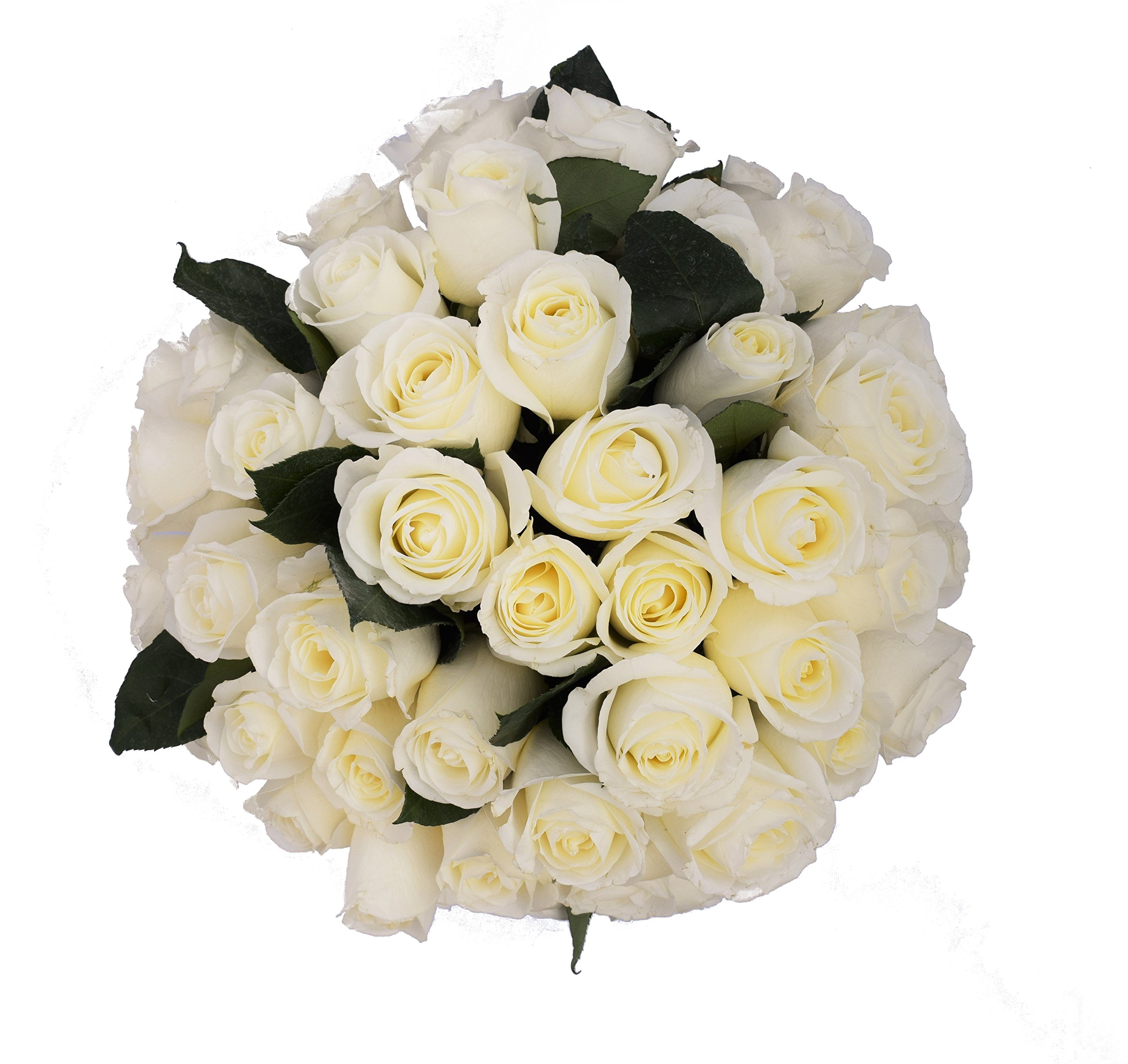 Amazon 50 Farm Fresh White Roses Bouquet By Justfreshroses