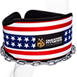 DMoose Fitness Dip Belt with Chain for Weightlifting, Pullups, Powerlifting, Crossfit, and Bodybuilding Workouts, Long…