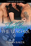 Shadowing the Teacher (Perfect Pairs Book 3)