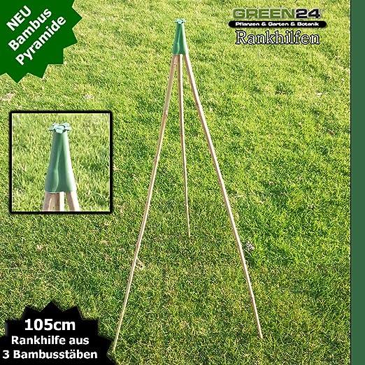 Bambus Rankhilfen Set Als Pyramide Kletterhilfe Und Rankgerust
