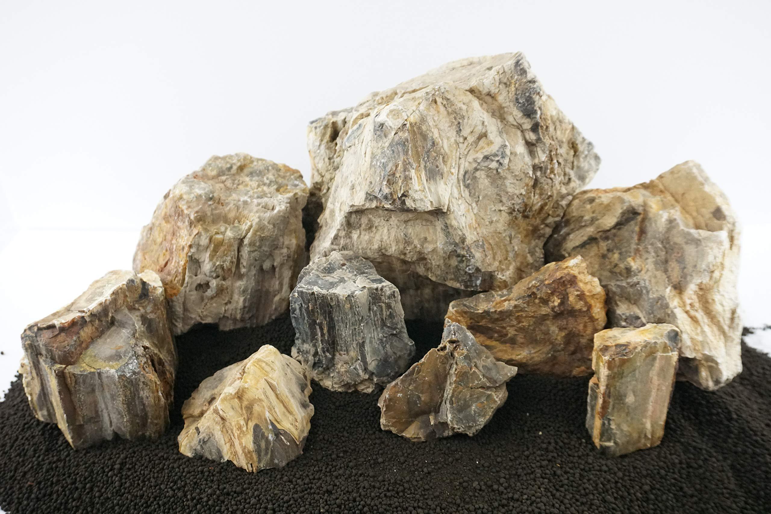 Lifegard Aquatics 25G-Canyon Canyon Petrified Stone 25G Rock Kit by Lifegard Aquatics