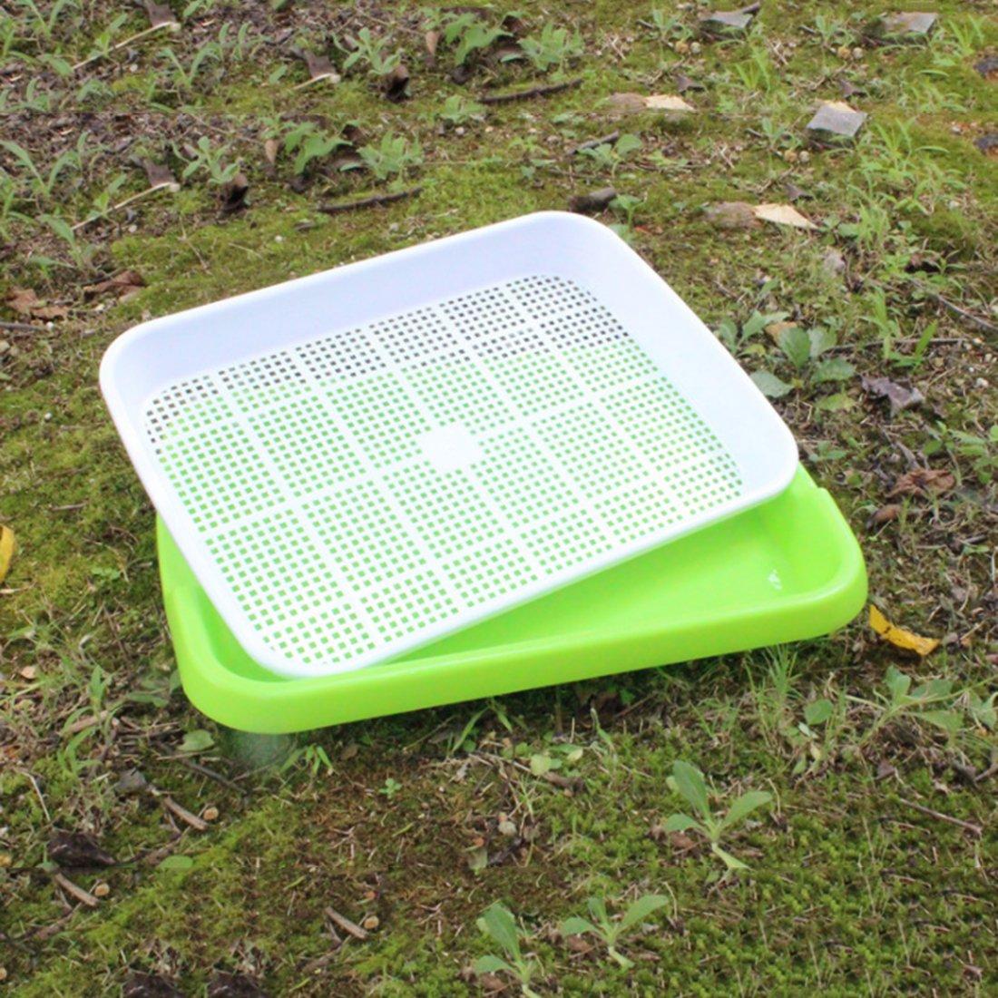 Papel para Semillas Bandeja para semillas bandeja de agua 34 * 24.5 * 6cm mecotech 2pcs double-couche bandeja Godet de germinaci/ón de pl/ástico bandeja de cultivo 13,4/* 9.6/* 2.4/pulgadas pl/ástico verde