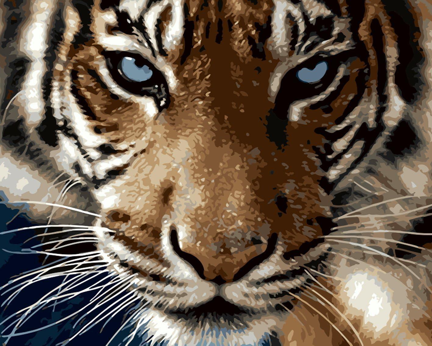 Fuumuui Lienzo de Bricolaje Regalo de Pintura al óleo para Adultos niños Pintura por número Kits Decoraciones para el hogar -Tigre 16 * 20 Pulgadas
