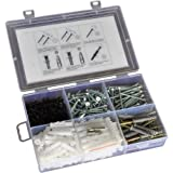TheCoolio 330 pc of Assorted Screws and Nylon Plugs