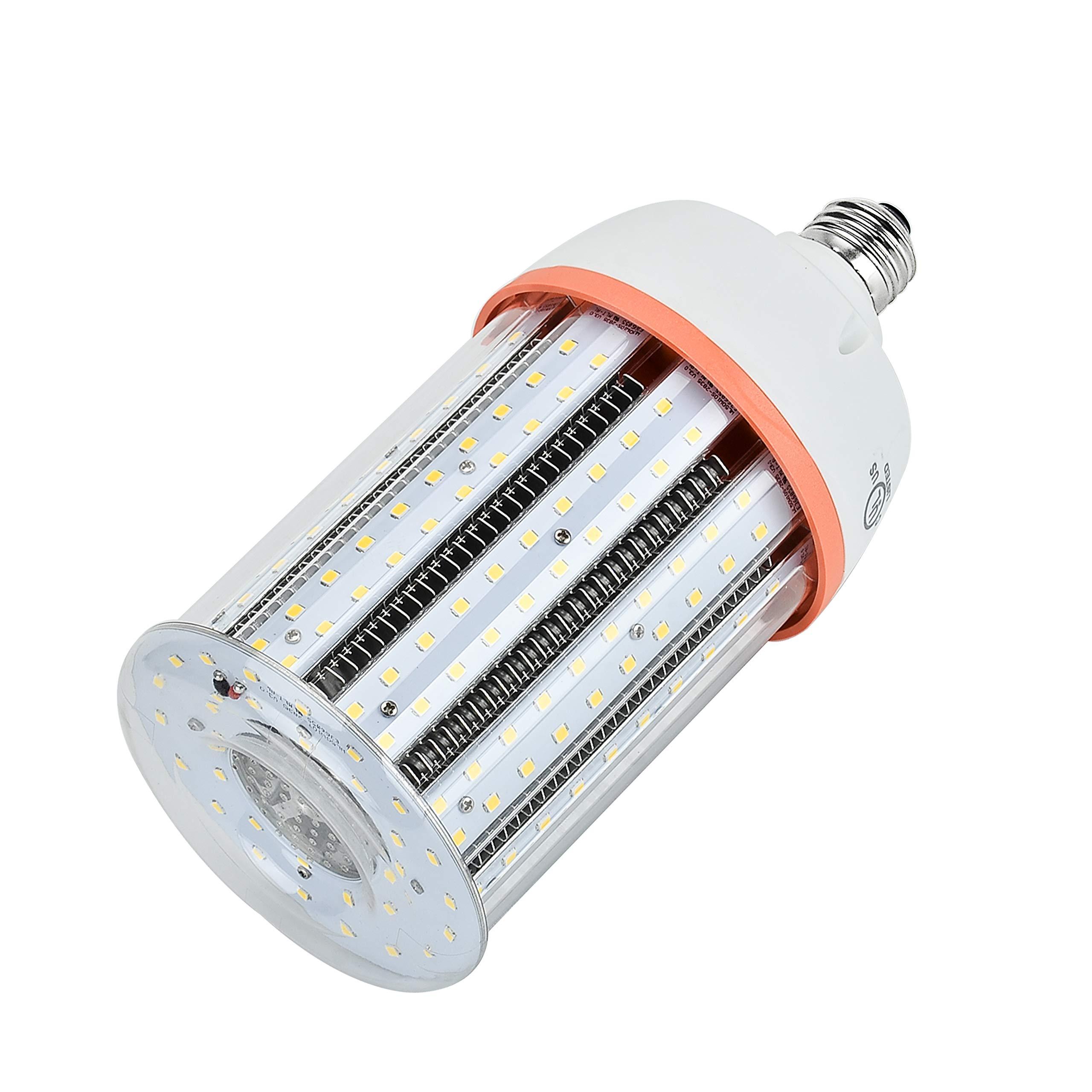 Hawks E26 LED Corn Light Bulbs 50W Cool White Light 6000K High Bay Warehouse Lighting for Garage Workshop Garden Office Barn Porch by Hawks (Image #1)