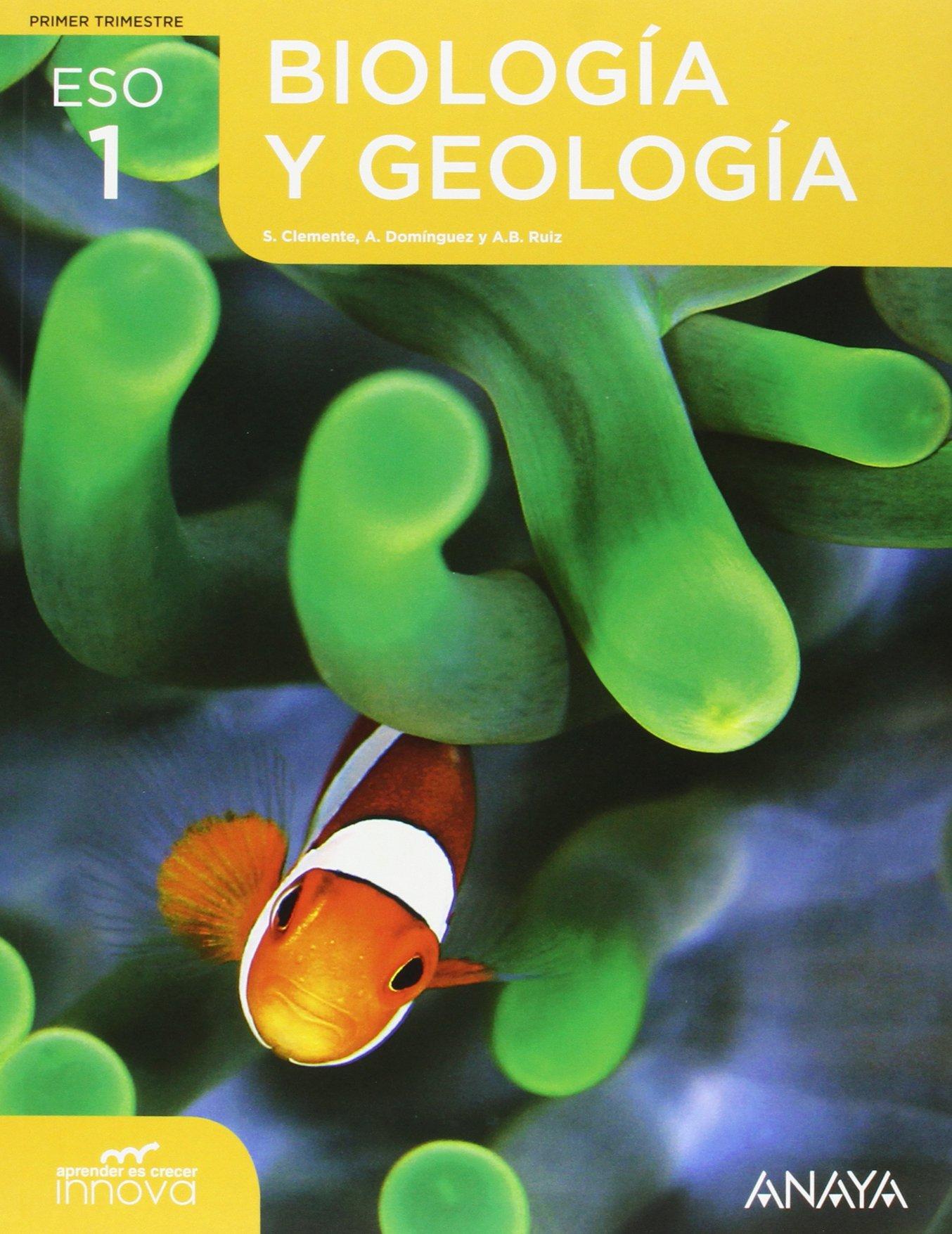 Biología Y Geología 1 Aprender Es Crecer Innova Spanish Edition Clemente Roca Silvia Domínguez Culebras Mª Aurora Ruiz García Ana Belén 9788469807187 Amazon Com Books