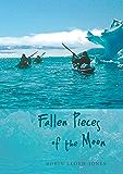 Fallen Pieces of the Moon