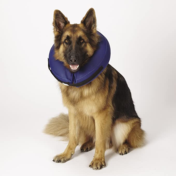Amazon.com: Total mascota Salud Inflatable Collar para ...