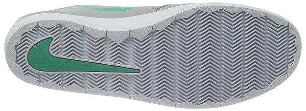 super popular 242ea 5c148 Nike SB Lunar Oneshot (Base Grey Crystal Mint) Mens Skate Shoes  Amazon.ca   Shoes   Handbags