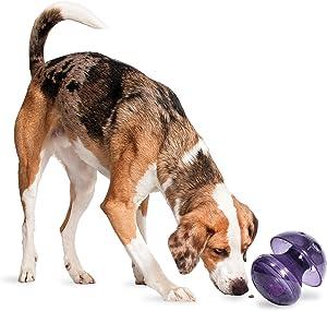 PetSafe Busy Buddy Magic Mushroom Dog Toy