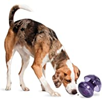 PetSafe Busy Buddy Magic Mushroom Dog Toy - Slow Feeder - Treat Dispenser