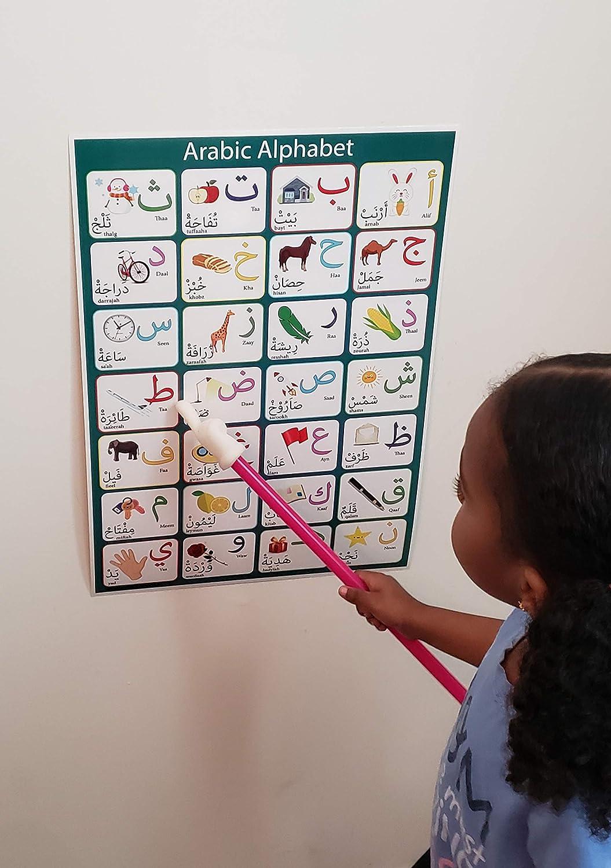 Laminiertes arabisches Alphabet-Poster Kinder im Vorschul und Kindergarten perfekt f/ür Kleinkinder