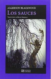 La casa vacía: 173 (Libros del Tiempo): Amazon.es: Blackwood, Algernon, Torres Oliver, Francisco: Libros